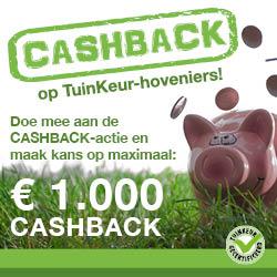 Cashback op onze factuur